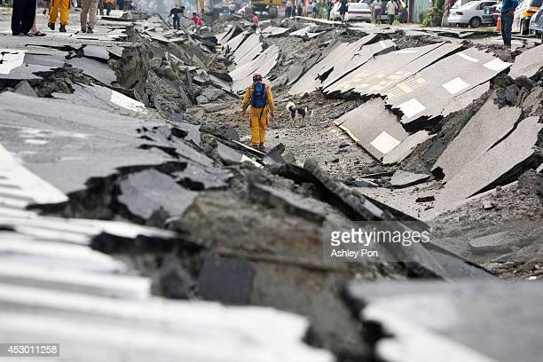 Rescue worker and his dog search through the site of the damaged road after several gas explosions in southern Kaohsiung on August 1, 2014 in...