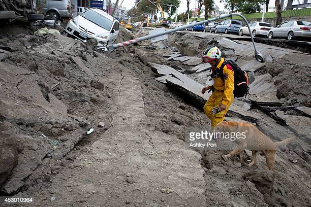 Rescue worker and his dog search through the site on the damaged road after several gas explosions in southern Kaohsiung on August 1, 2014 in...