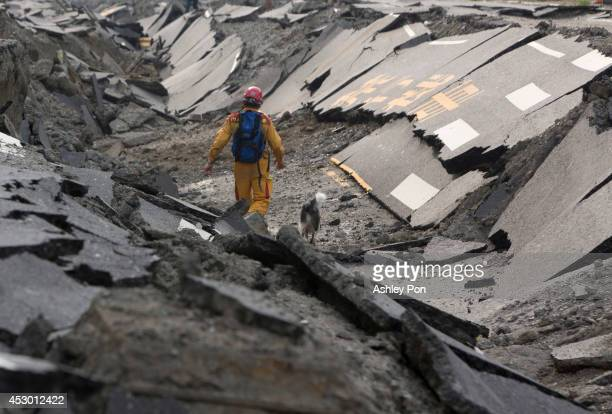 Rescue worker and his dog search through the site on the damaged road after several gas explosions took place in southern Kaohsiung on August 1, 2014...