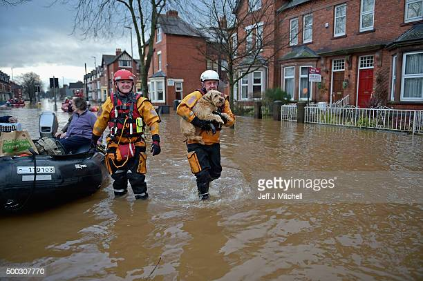 A rescue worker carries a dog as teams continue to evacuate people from their homes after Storm Desmond caused flooding on December 7 2015 in...