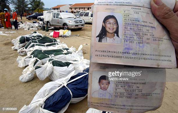 A rescue worker displays passports of Candian national children besides dead bodies in Khao Luk southern Thailand 29 December 2004 At least 1500...