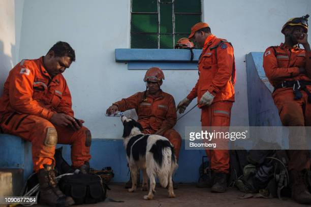 A rescue worker lets a dog drink from a water bottle after a Vale SA dam burst in Brumadinho Minas Gerais state Brazil on Monday Jan 28 2019 Vale's...