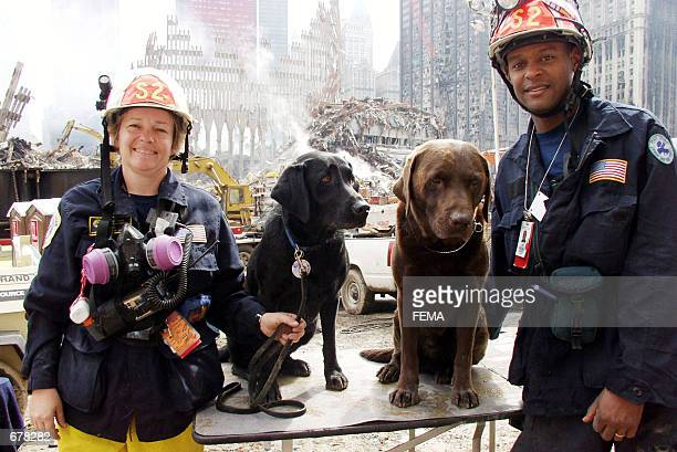 Rescue workers and their canine counterparts take a break from the ongoing rescue and recovery efforts at the site of the World Trade Center...