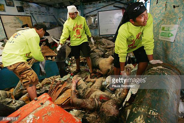 Rescue workers carry bodies from a shop December 28 2004 in Phi Phi Village Ton Sai Bay Thailand Hundreds were killed on the island when an...