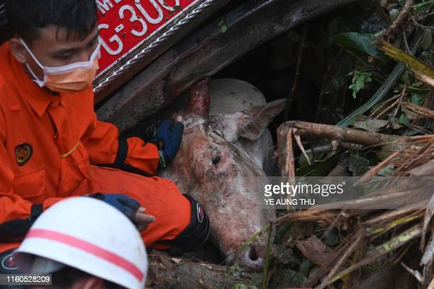 Rescue workers sit with a cow stuck under a vehicle after a landslide in Paung township Mon state on August 10 2019 The death toll from a landslide...