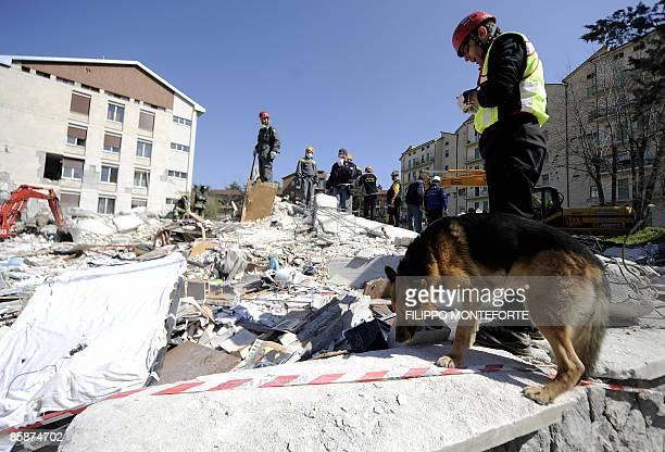 Rescuer and his dog look for survivors in the remains of a collapsed building on April 8, 2009 in the Abruzzo capital L'Aquila. Italian Prime...