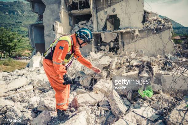 rescuer search with help of rescue dog - earthquake stock pictures, royalty-free photos & images