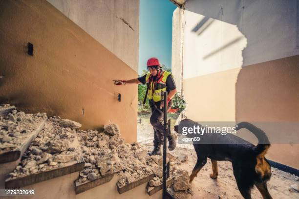 rescuer search with help of rescue dog stock photo - natural disaster stock pictures, royalty-free photos & images