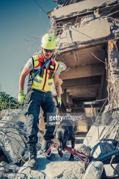 rescuer search with help of rescue dog stock photo - rescue worker stock pictures, royalty-free photos & images