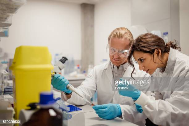 research and educational laboratory - urine sample stock photos and pictures