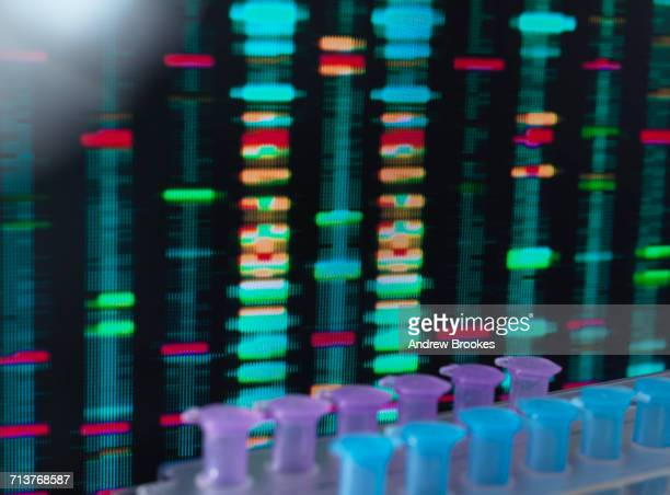 DNA Research, DNA test results on a computer screen in the laboratory with a tray of samples in the foreground