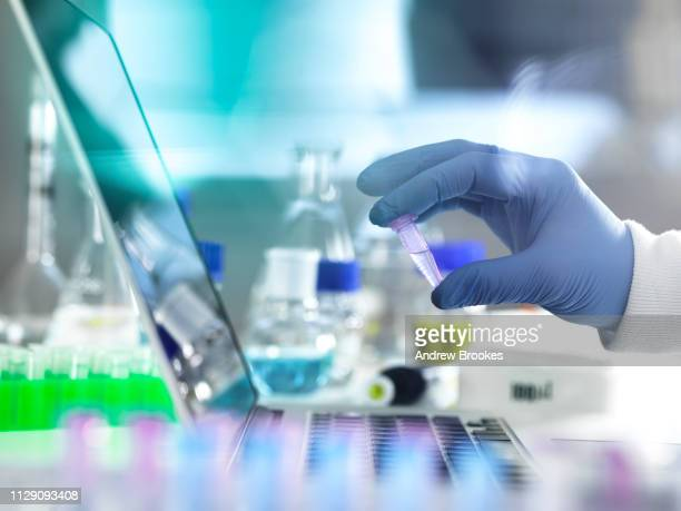 research experiment, scientist examining vial containing sample used in biomedical, dna, biotechnology, analytical chemistry and pharmaceutical research - 生物学 ストックフォトと画像