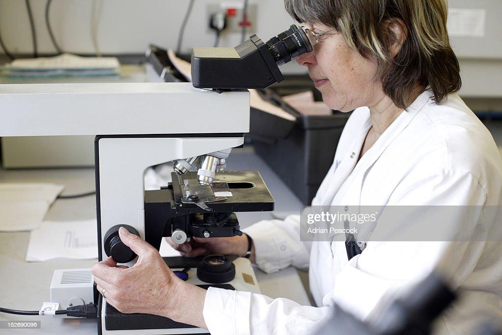 research hospital worker : Foto de stock