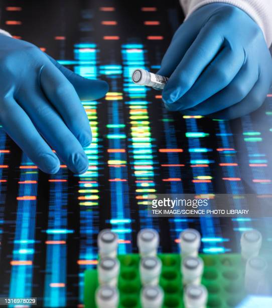 dna research - drug stock pictures, royalty-free photos & images