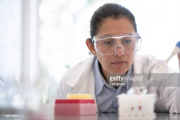 research professional at work - microbiologist stock pictures, royalty-free photos & images