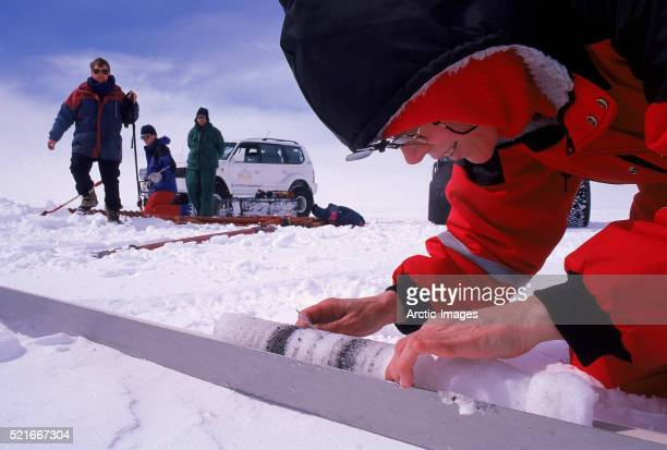 Research Scientist Examining an Ice Core