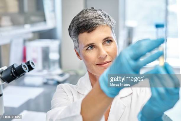 research worker examining medical sample in lab - microbiology stock pictures, royalty-free photos & images