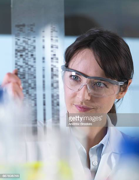 Researcher holding a DNA gel during a genetic experiment in a laboratory