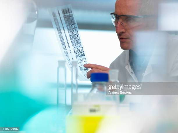 Researcher holding a DNA (deoxyribonucleic acid) gel during a genetic experiment in a laboratory