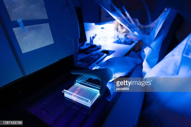 researcher in laboratory: coronavirus test results - uv protection stock pictures, royalty-free photos & images