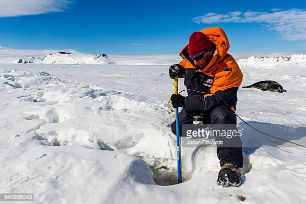 A researcher monitors Weddell Seals beneath the sea ice with a tablet computer and remote controlled camera.