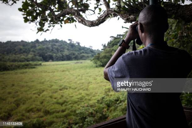"""Researcher of """"Wildlife Conservation Society"""" NGO monitors animals at Langoue Bai in the Ivindo national park, on April 26, 2019 near Makokou. -..."""