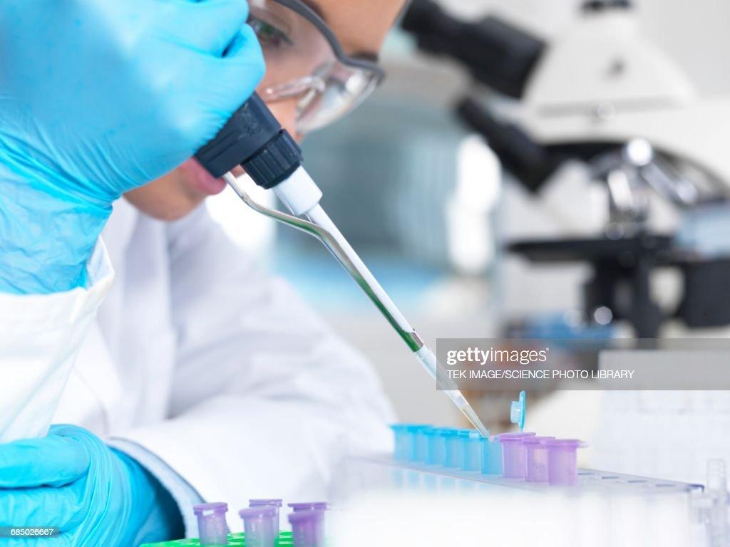 Researcher pipetting liquid : Stockfoto
