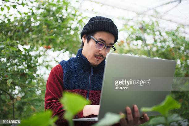 Researcher using a laptop computer in a greenhouse