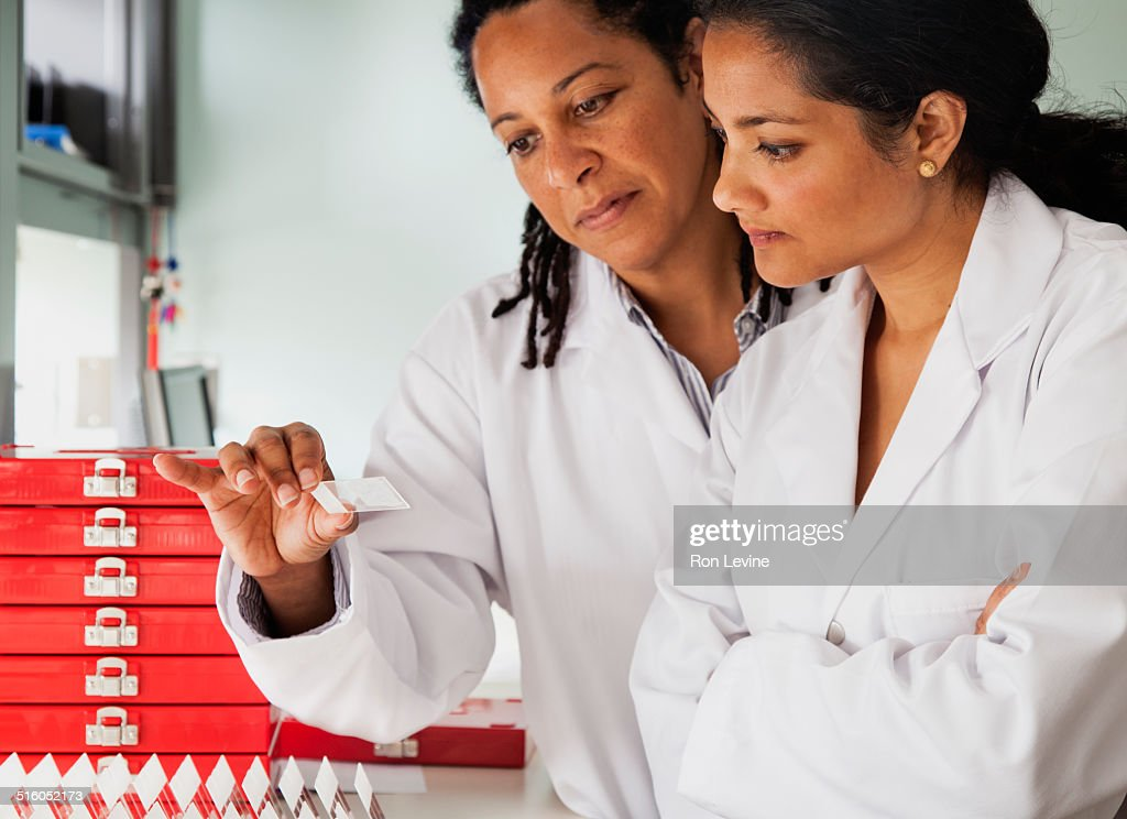 Researchers comparing slides in hematology lab : Stock Photo