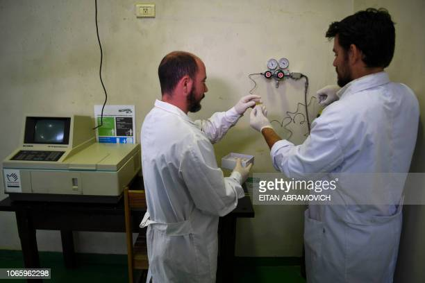 Researchers of the Genetics Veterinary Institute make tests with samples from a polo horse at La Plata University in La Plata Argentina on November...
