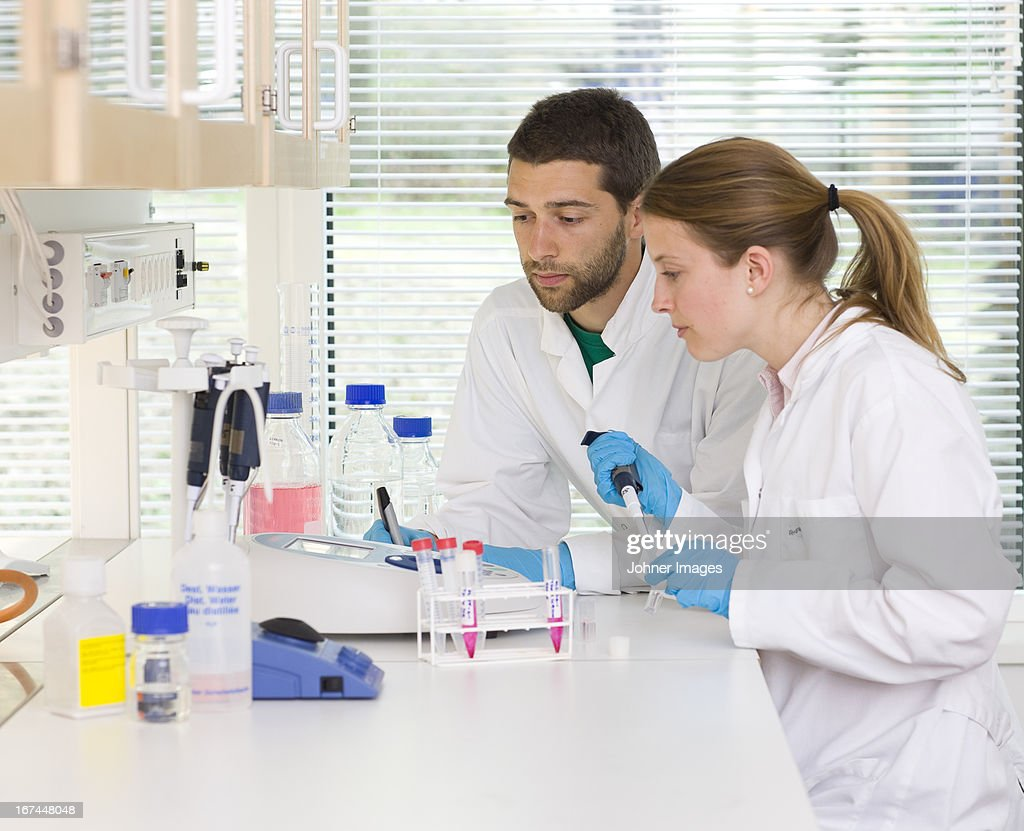 Researchers working in laboratory : Stock Photo