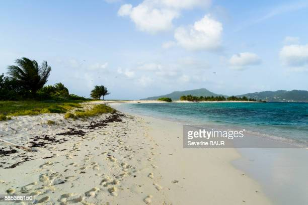 Reserve, Sandy Island, Carriacou, West Indies