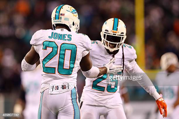 Reshad Jones of the Miami Dolphins celebrates with Louis Delmas after intercepting a ball intended for Jeff Cumberland of the New York Jets late in...