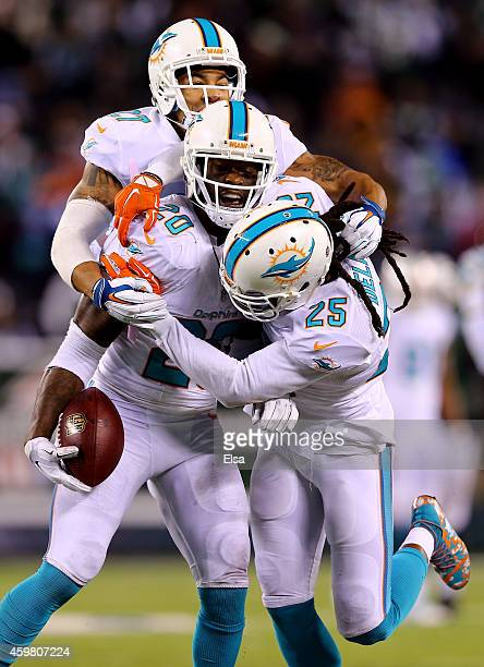 Reshad Jones of the Miami Dolphins celebrates with Louis Delmas and Jimmy Wilson after intercepting a ball intended for Jeff Cumberland of the New...