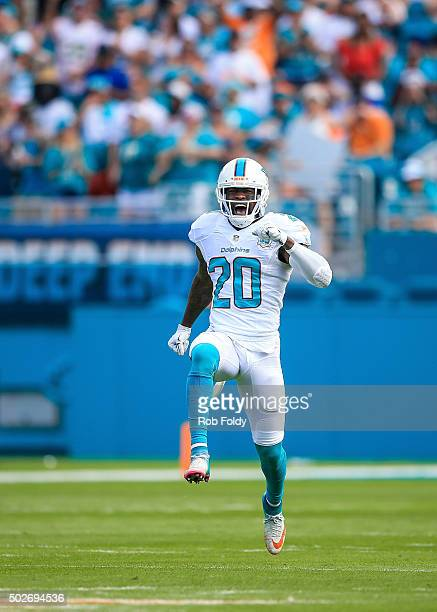 Reshad Jones of the Miami Dolphins reacts after a play during the game against the Indianapolis Colts at Sun Life Stadium on December 27 2015 in...