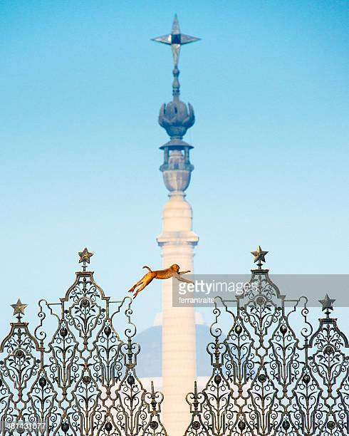 residence of the president of india - india gate stock pictures, royalty-free photos & images