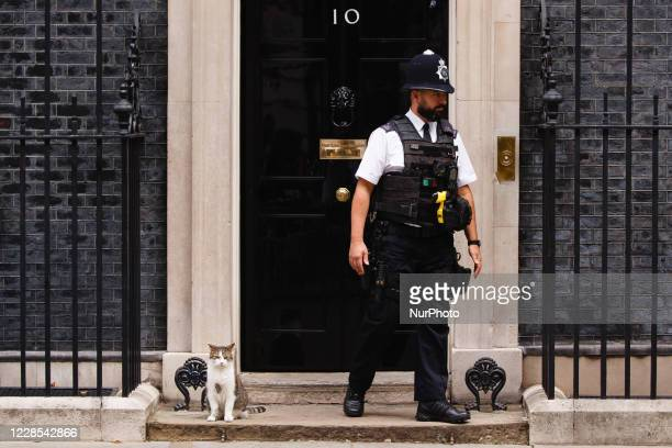Resident cat Larry sits beside a police officer outside 10 Downing Street in London, England, on September 16, 2020.