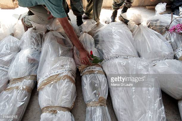 A resident leaves a flower on the bodies of the victims of the Israeli air strike in Qana at the morgue July 30 2006 in Tyre Southern Lebanon...
