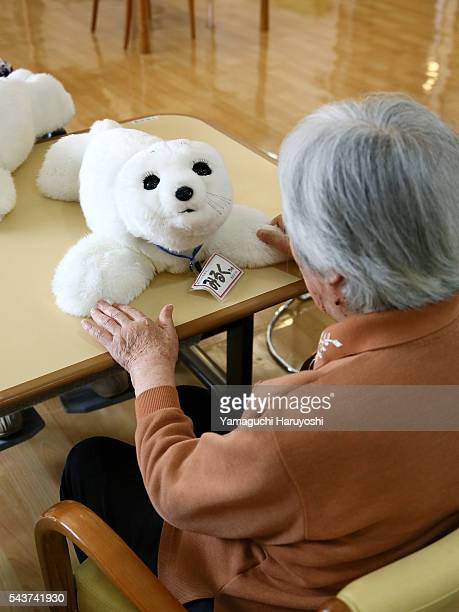 A resident of a nursing home plays with nursingcare robot 'Paro' at the nursing home in Yokohama city Kanagawa prefecture Japan Oct 9 2013 PARO is...