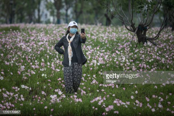 A resident selfies in flowers at street on April 21 2020 in Wuhan Hubei Province ChinaThe government started lifting outbound travel restrictions on...