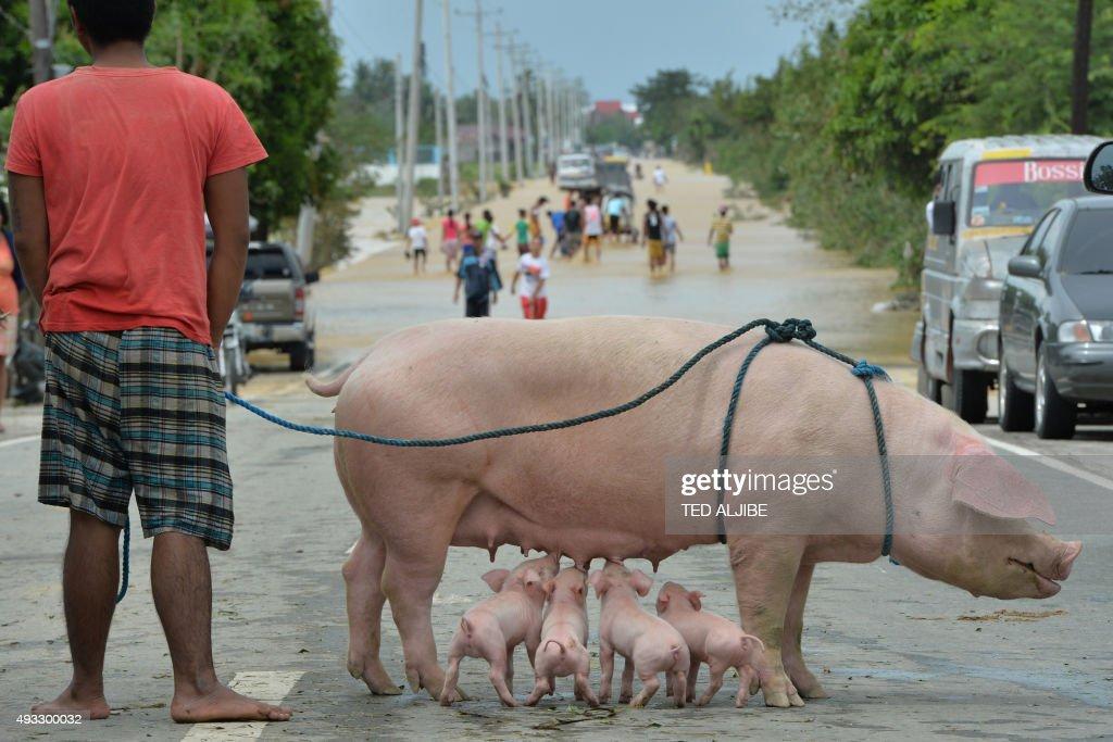 PHILIPPINES-WEATHER-TYPHOON : Nachrichtenfoto