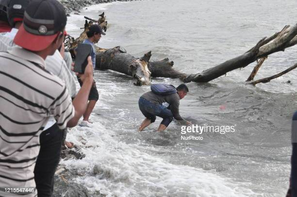 Resident tries to push a sunfish back into the sea after being stranded alive in Talise Beach, Besusu Village, Palu City, Central Sulawesi Province...