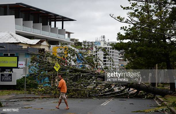 A resident walks past a fallen tree brought down by Tropical Cyclone Marcia in the northern Queensland town of Yeppoon on February 20 2015 Two...