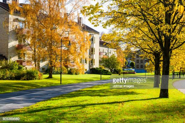 residential district at sunny day - residential district stock photos and pictures