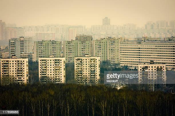 Quartiers résidentiels de la forêt d'hiver