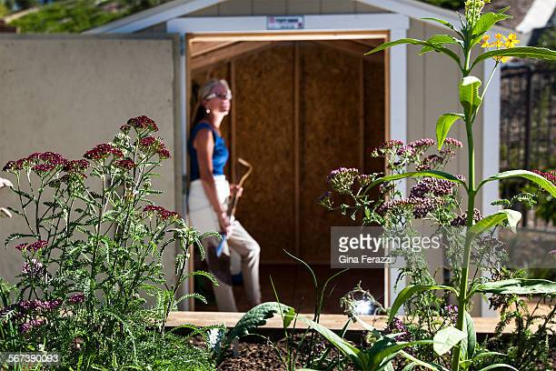 Residential Farm Manager Gloria Broming looks out form the gardening shed behind booming yarrowleft at the community garden at Rancho Mission Viejo...