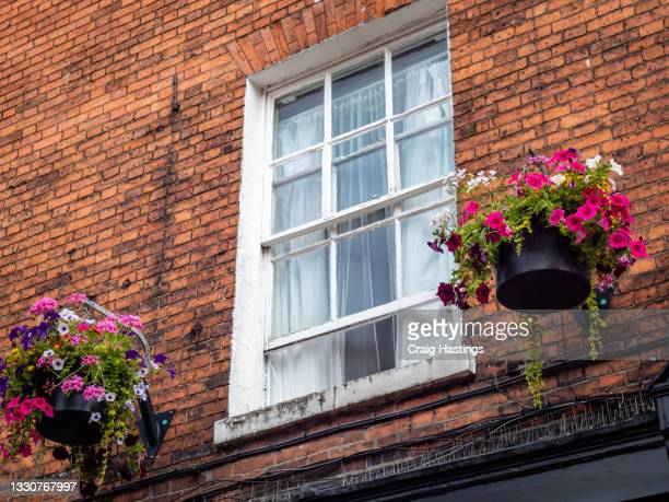 residential house apartment old style sash window with flowers, london, uk - embellishment stock pictures, royalty-free photos & images