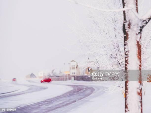 Residential neighborhood in Colorado during heavy snowfall