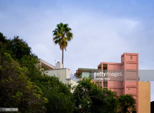 residential neighborhood - oakland california stock pictures, royalty-free photos & images