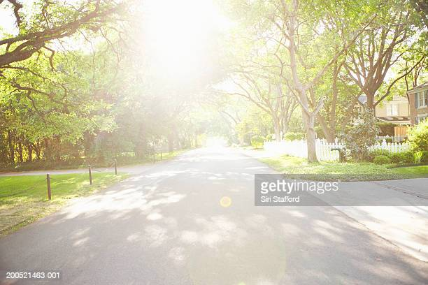 residential neighborhood - street stock pictures, royalty-free photos & images
